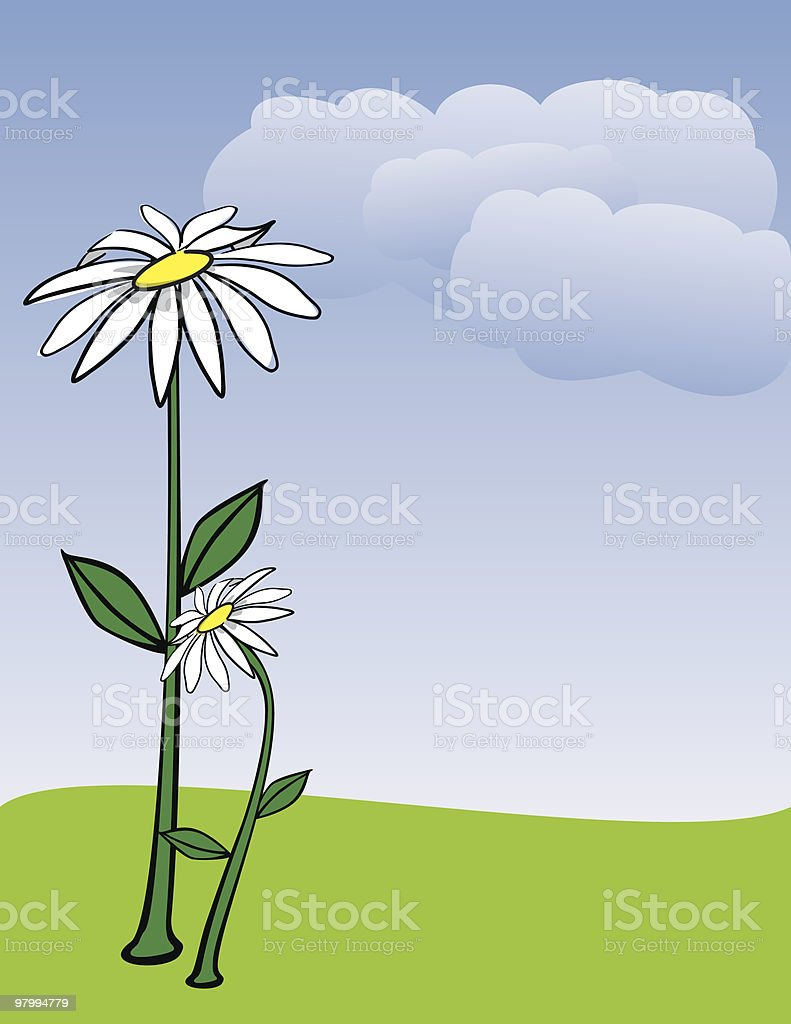 Daisy Flower Note paper royalty-free daisy flower note paper stock vector art & more images of casual clothing