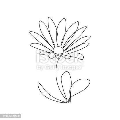 Abstract daisy-like flower in continuous line art drawing style. Minimalist black linear sketch isolated on white background. Vector illustration