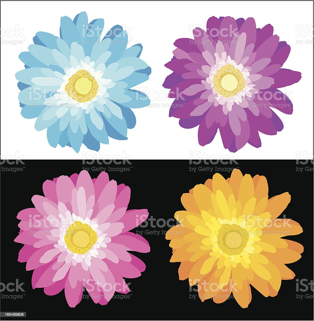 Daisy Flower Stock Vector Art More Images Of Beauty In Nature