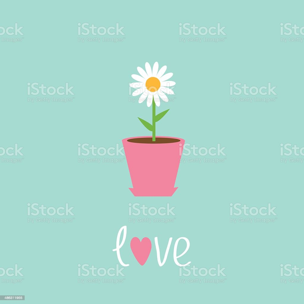Daisy in pot. Love card. vector art illustration