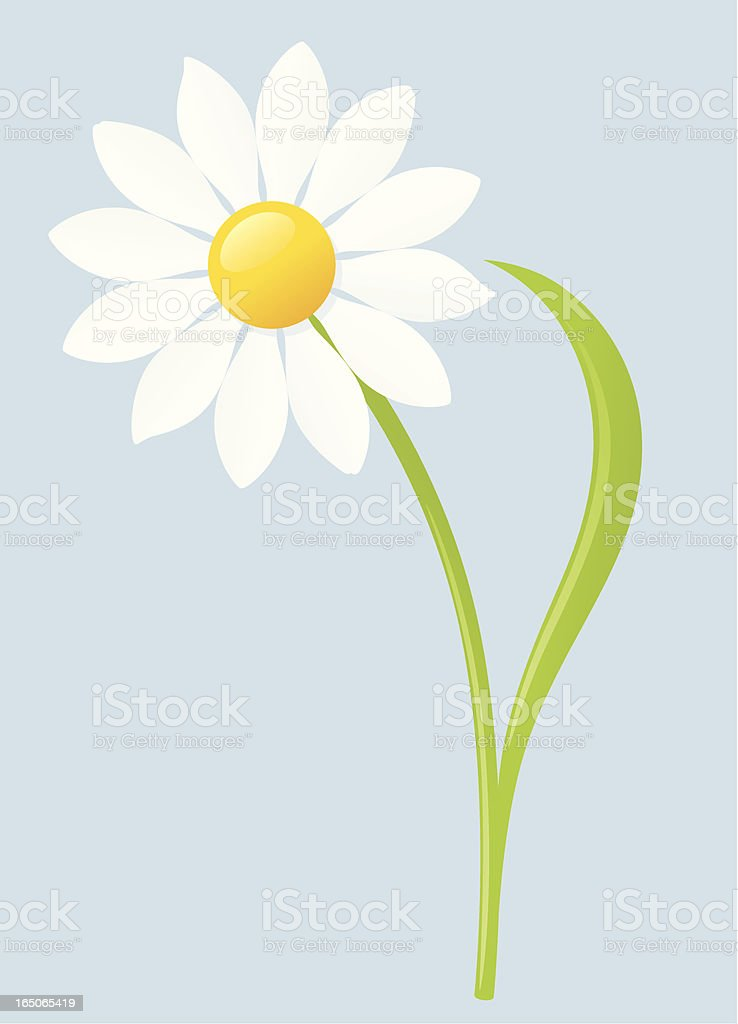 Daisy - incl. jpeg royalty-free stock vector art