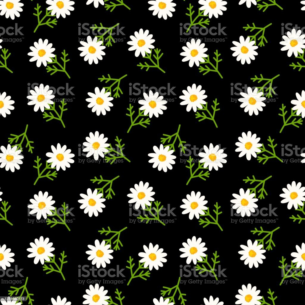 Daisy Seamless Pattern On Black Background Floral Ditsy Print With