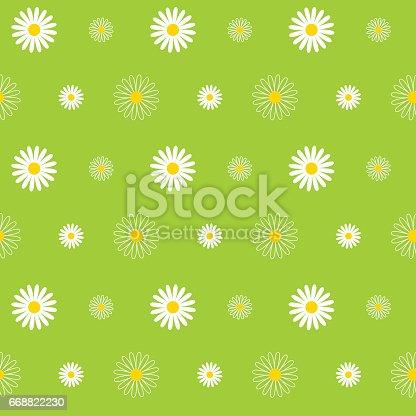 Daisy, Flower, Seamless, Pattern, Background, Floral Pattern