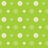 Daisy, Flower, Seamless, Pattern, Background, Floral Pattern