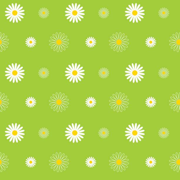 Daisy Seamless Pattern Daisy, Flower, Seamless, Pattern, Background, Floral Pattern daisy stock illustrations