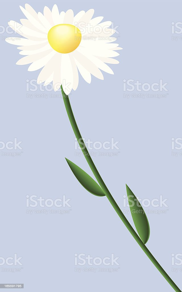 daisy royalty-free stock vector art