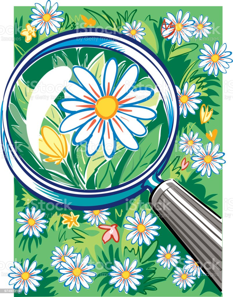 daisy royalty-free daisy stock vector art & more images of blossom