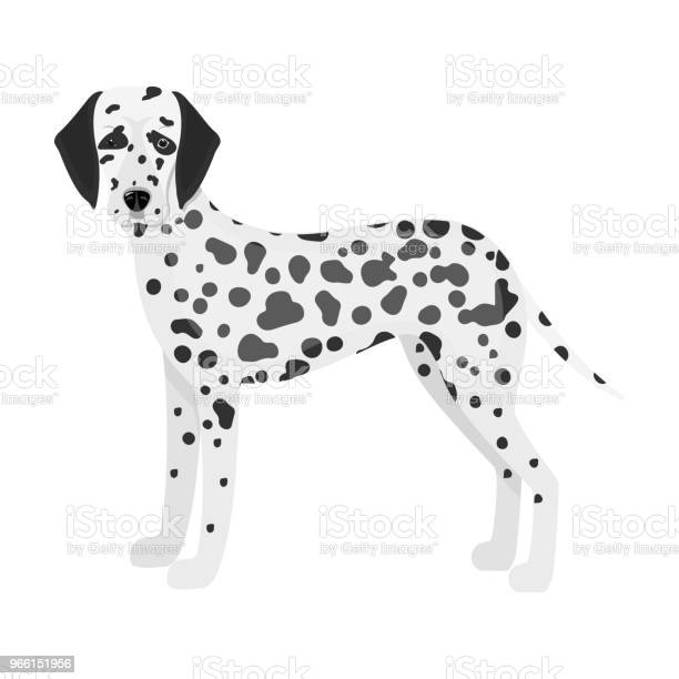Dalmatiner Einzelne Symbol In Monochromen Stil Dalmatinischen Vektor Symbol Lager Abbildung Web Stock Vektor Art und mehr Bilder von Dalmatiner