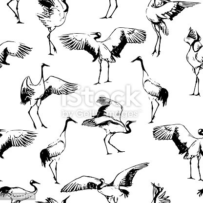 Japanese cranes dancing - seamless background. Stylized illustration Sketch in South East Asia style and aesthetics.