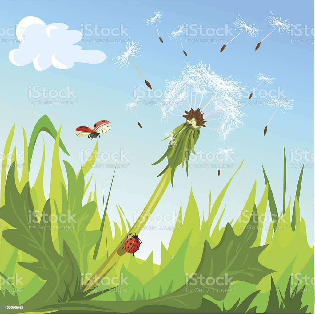 dandelion and ladybugs against the sky royalty-free stock vector art