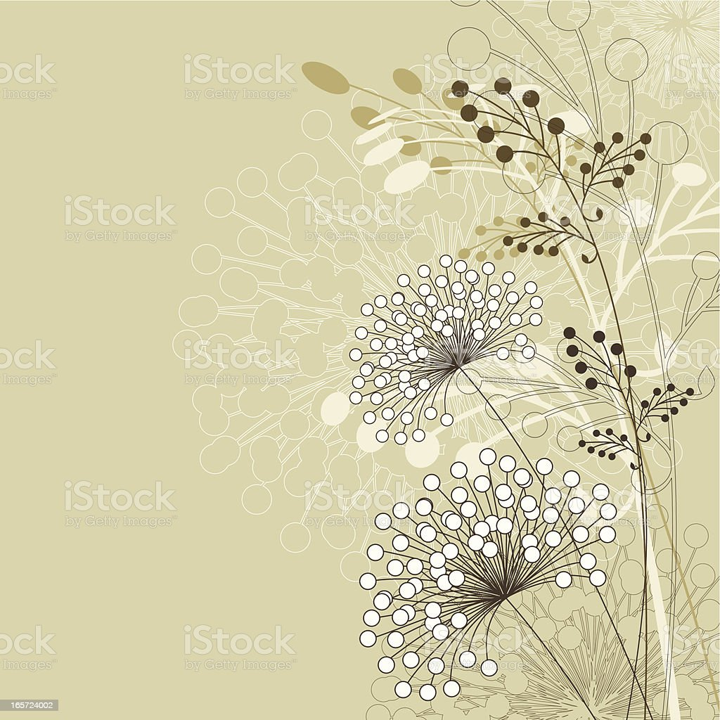 Dandelion and milkweed floral background royalty-free stock vector art