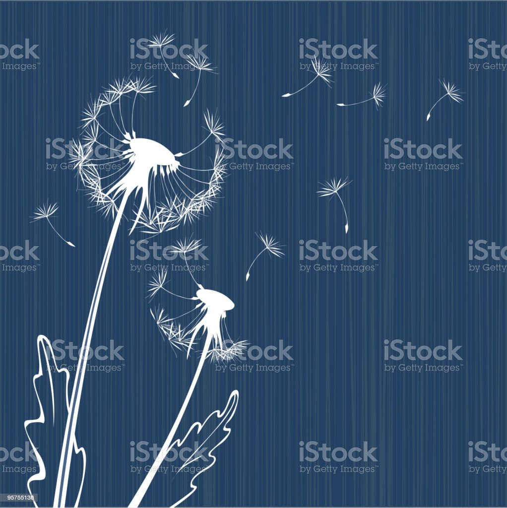 Dandelion background royalty-free stock vector art