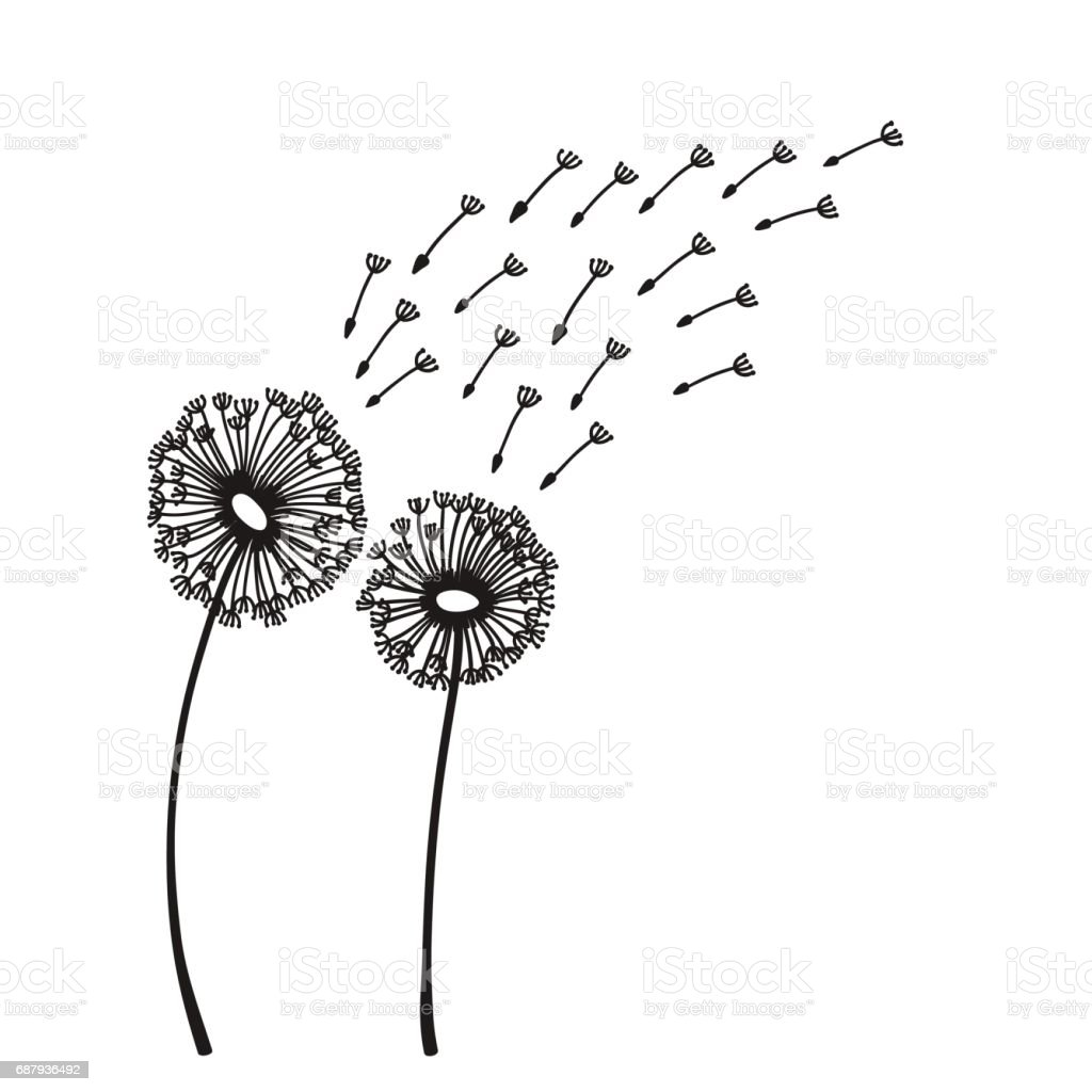 Dandelion blowing silhouette vector art illustration