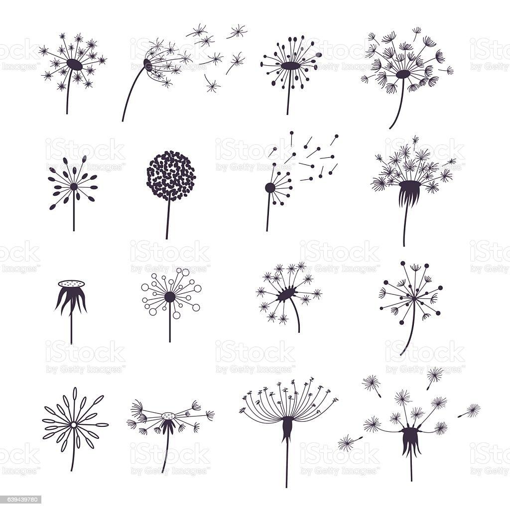 Dandelion Fluffy Flower and Seeds Set. Vector – Vektorgrafik