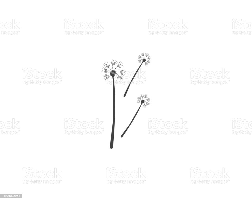 Dandelion Icon And Symbol Template Illustration Stock Illustration