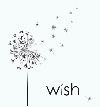 Dandelion make a wish