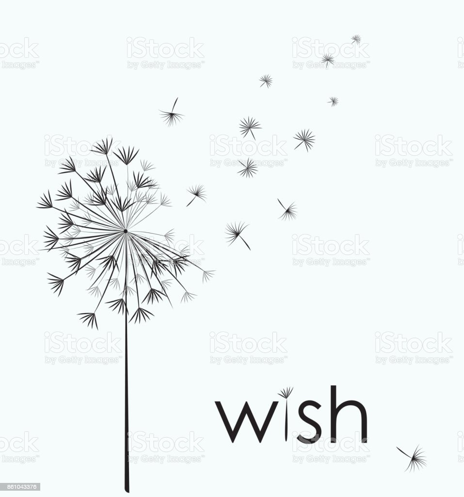 Dandelion make a wish vector art illustration