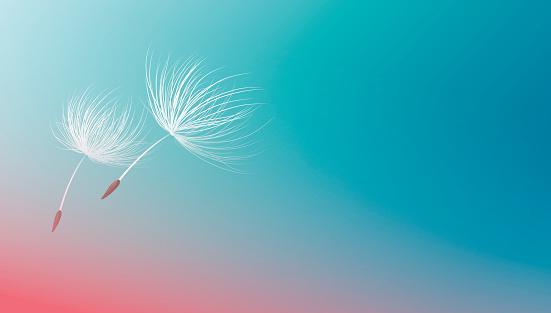 Dandelion seeds flying on blue background vector illustration