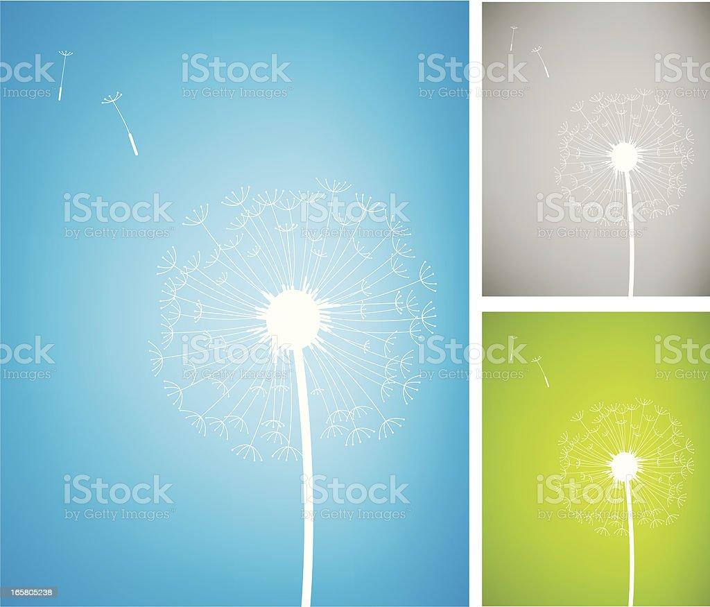 Dandelion royalty-free stock vector art