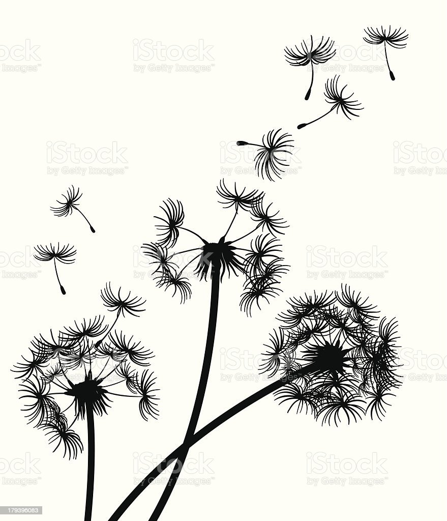 Dandelions blowing in the wind vector art illustration