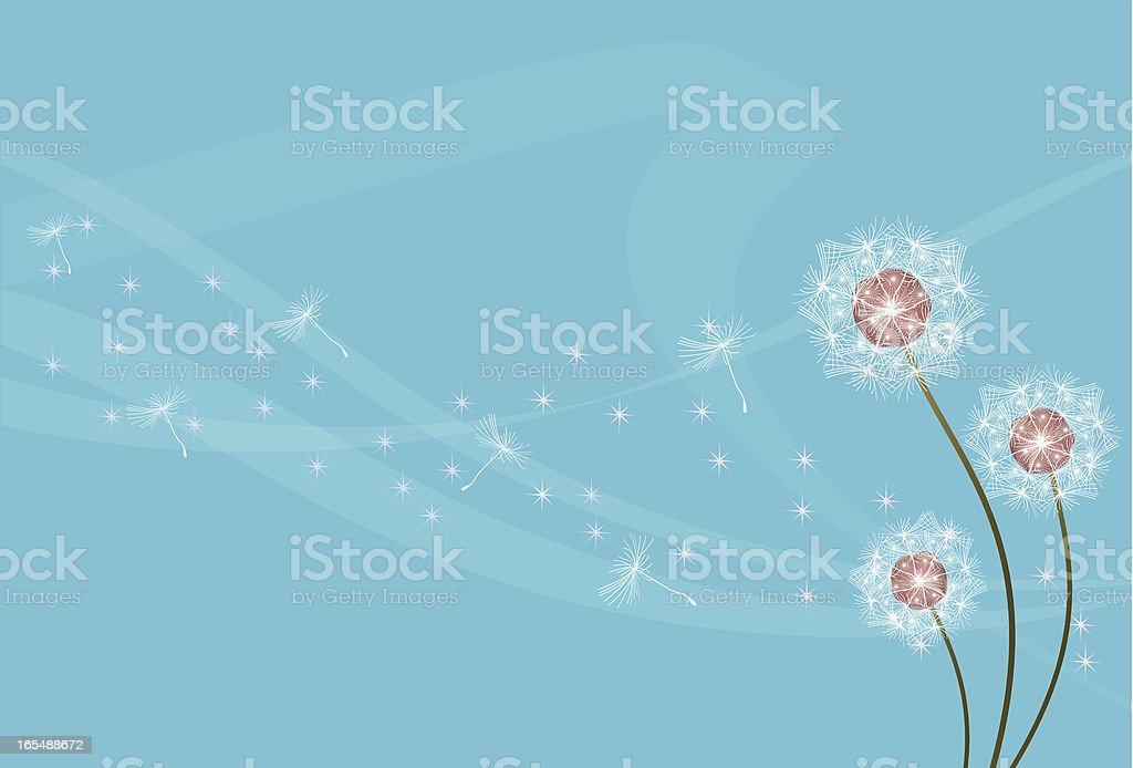 dandelions royalty-free dandelions stock vector art & more images of backgrounds