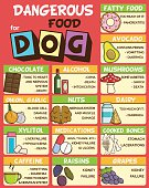 Infographic poster about food and snacks that are dangerous for your dog and may cause intoxication. A set of icons including avocado, mushroom, dairy, coffee, etc