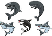Dangerous marine predators icon set