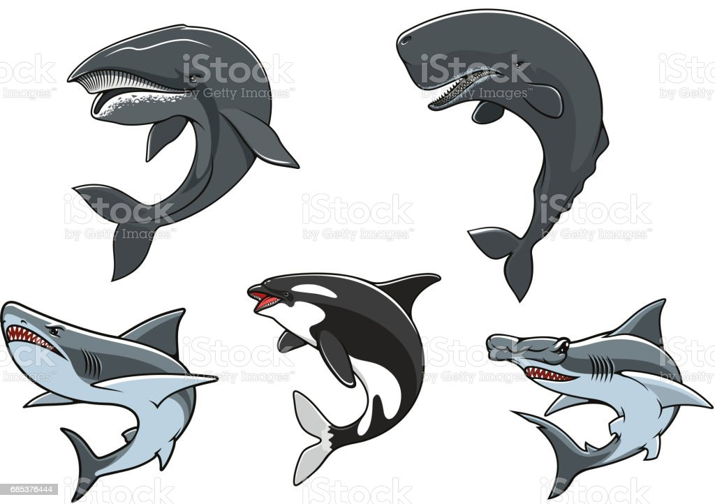 Dangerous marine predators icon set vector art illustration
