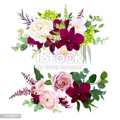 Luxury fall floral vector bouquets.Dark and white orchid, garden dusty rose, ranunculus, burgundy red astilbe, pink camellia, green hydrangea and greenery.Autumn wedding flowers. Isolated and editable