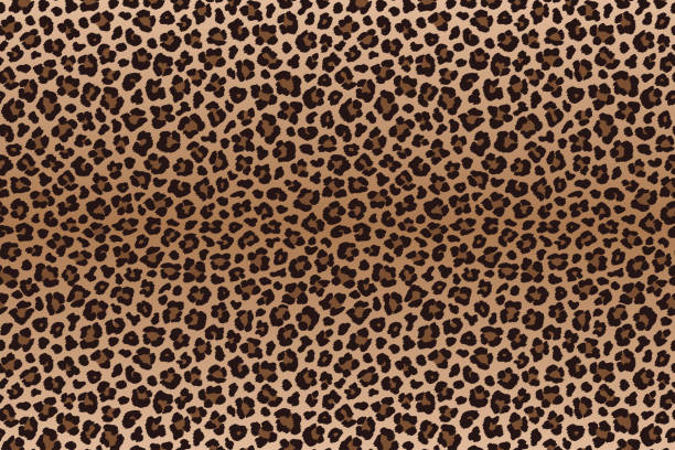 暗い茶色のヒョウの毛皮テクスチャを発見します。ベクトル - ヒョウのテクスチャ点のイラスト素材/クリップアート素材/マンガ素材/アイコン素材