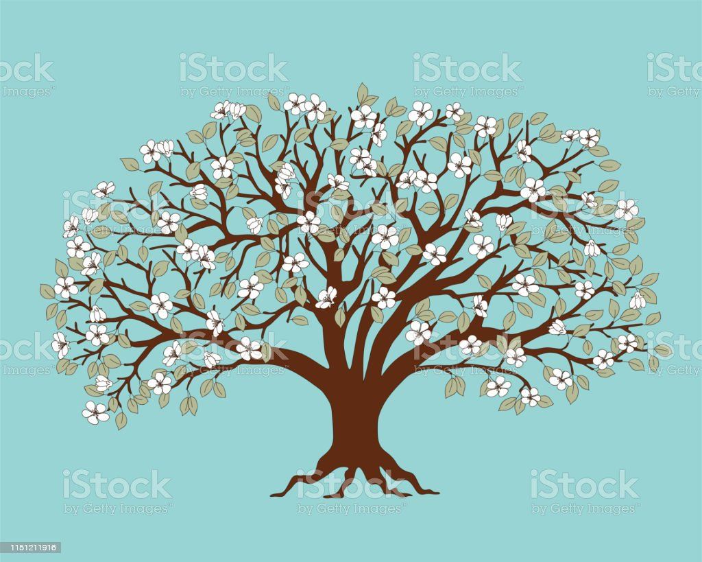 Dark Brown Silhouette Apple Tree With White Blossom Stock Illustration Download Image Now Istock C4d 3ds dae dxf fbx obj wrl oth. https www istockphoto com vector dark brown silhouette apple tree with white blossom gm1151211916 311922099