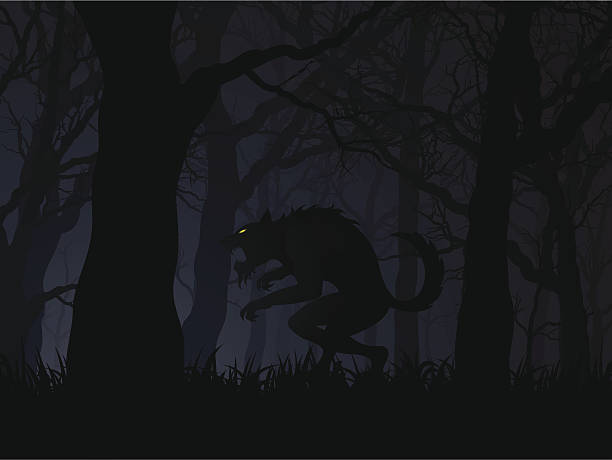 Dark digital illustration of a werewolf in a forest  an editable vector file of a werewolf at night werewolf stock illustrations