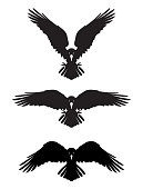 Dark Evil heraldic raven. Mascot, logotype, label.