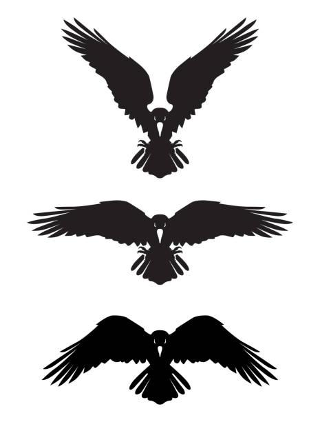 Dark Evil heraldic raven Dark Evil heraldic raven. Mascot, logotype, label. bird clipart stock illustrations