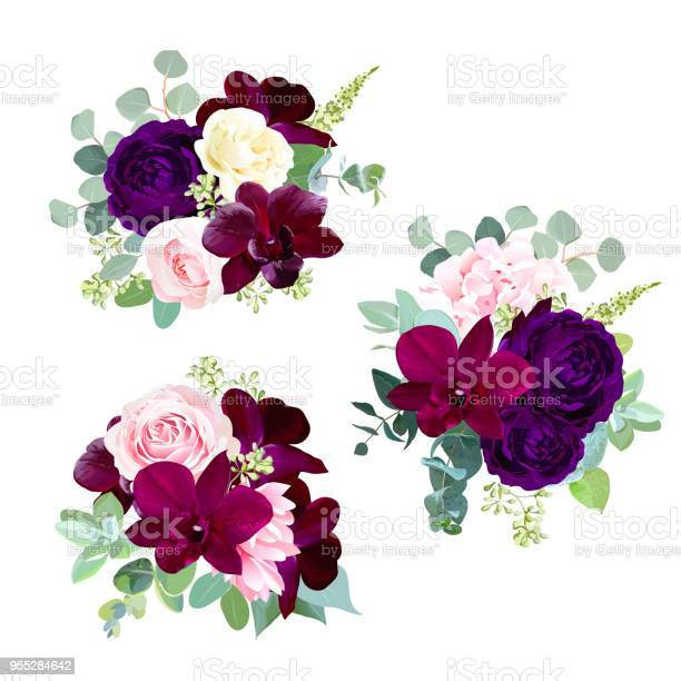 Dark flowers vector design seasonal bouquets vector id955284642?b=1&k=6&m=955284642&s=612x612&h=lym1q7cpvfucnmv3kdqsp9ohkjmorfrtskojgu5yaug=