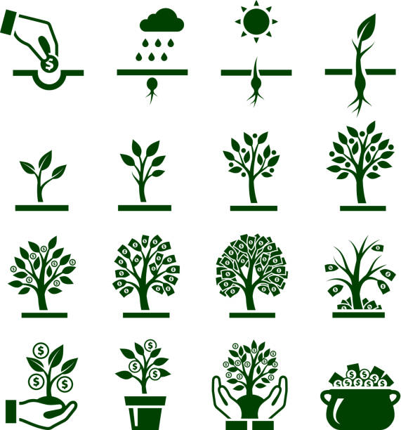 Dark green vector icons of money growing on trees Money Growing on Tree icon set root hair stock illustrations