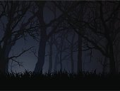 an editable vector illustration of a forest at dark night