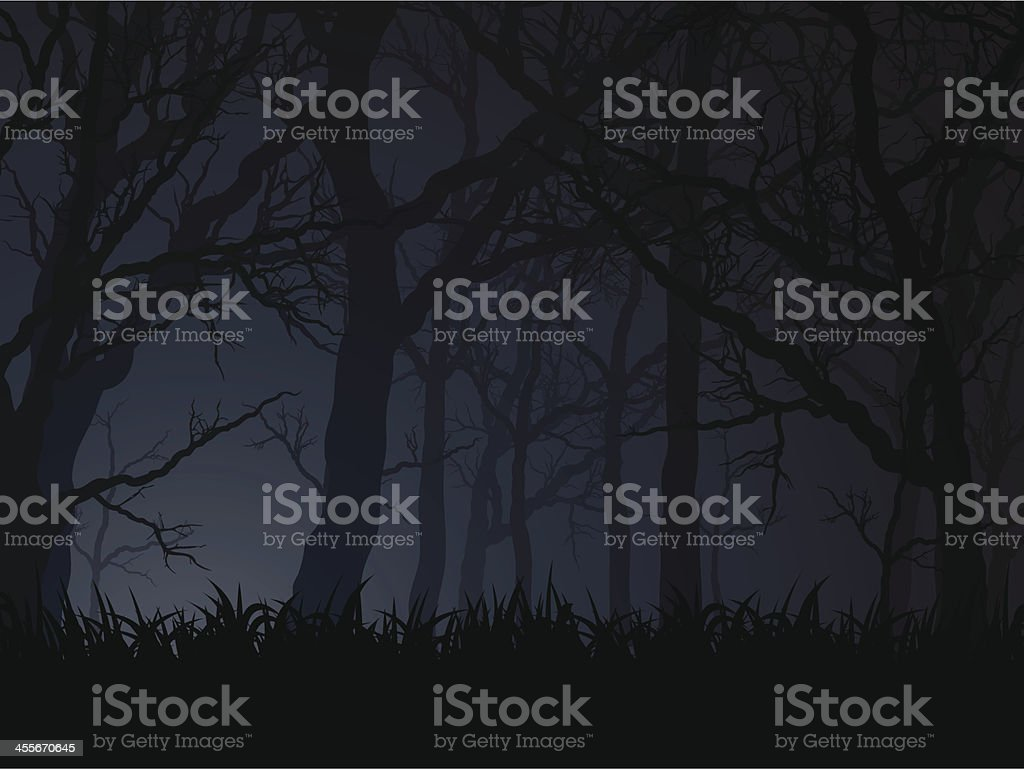 dark night vector art illustration