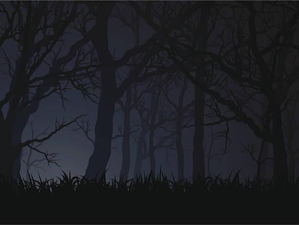 dark night - forest stock illustrations