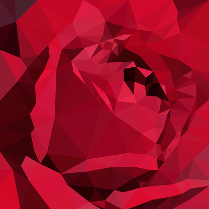 Dark red rose wallpaper