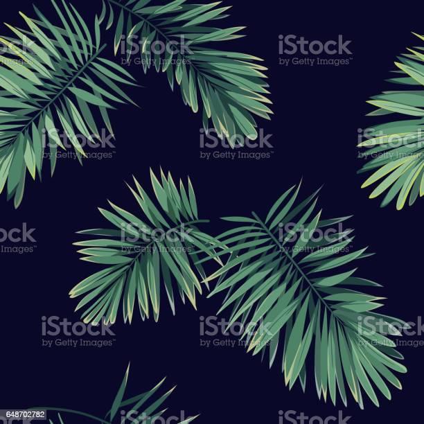 Dark tropical background with jungle plants seamless vector tropical vector id648702782?b=1&k=6&m=648702782&s=612x612&h=t5ifnlvbieiadxqorrfgw2zcxzlqn7hjm8vj5cgqdgy=