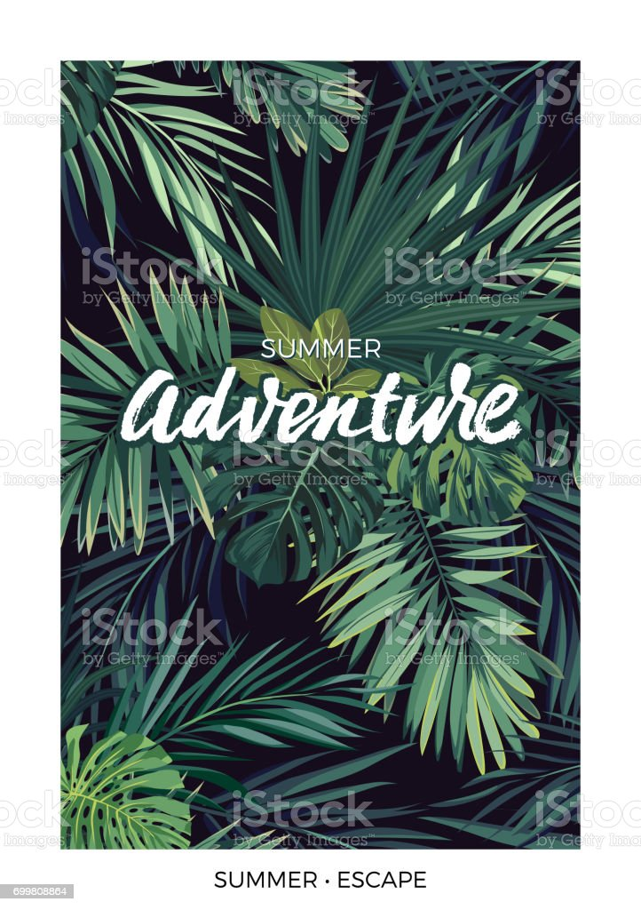 Dark vector tropical design with green jungle palm leaves and lettering vector art illustration