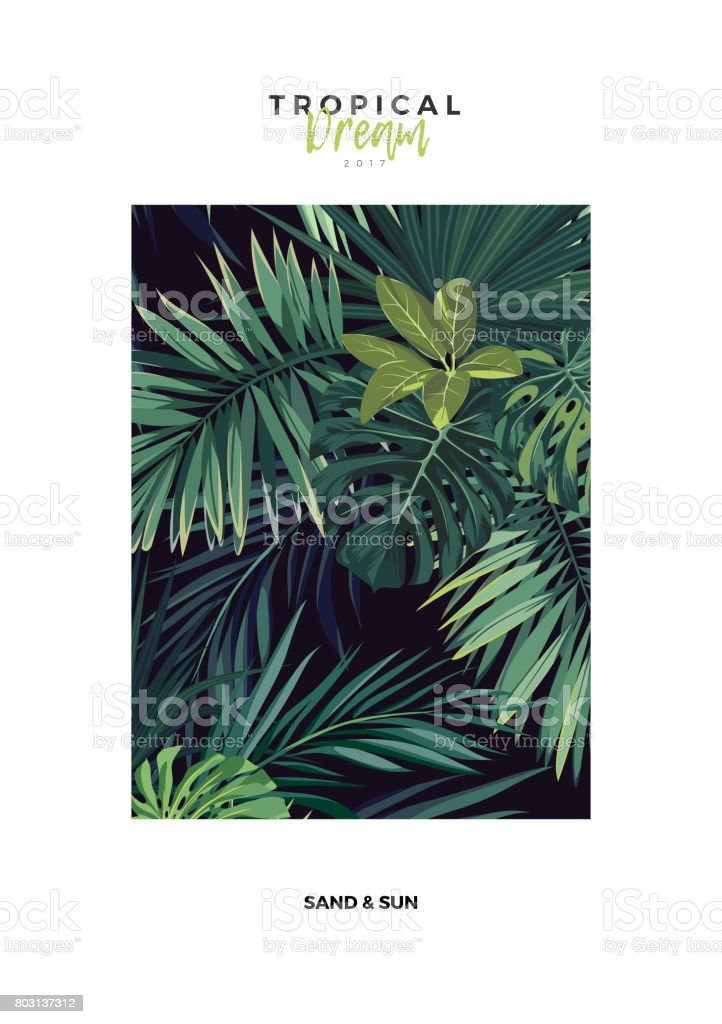 Dark tropical typography postcard design with green jungle palm...