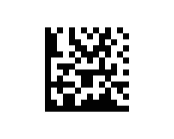 Data Matrix Barcode Standard Sample vector art illustration