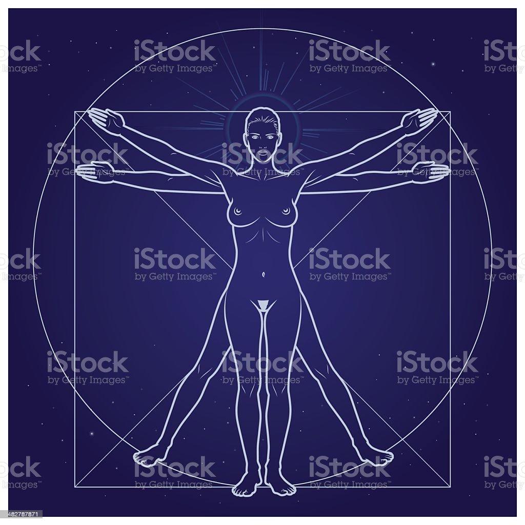DaVinci Woman vector art illustration