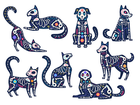 Day animals. Dia de los muertos, cats and dogs skulls, skeletons decorated with flowers, traditional mexican latin holiday vector symbols
