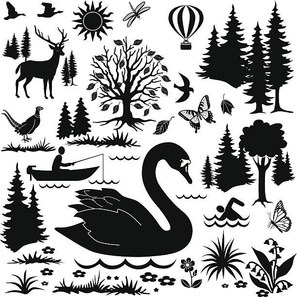 stockillustraties, clipart, cartoons en iconen met day at the national park design elements - wildplassen