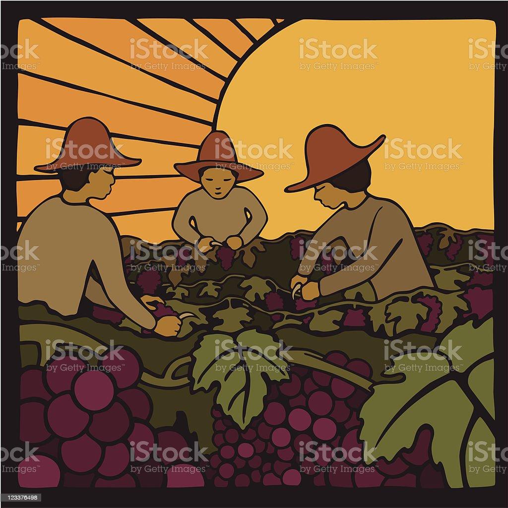 Day Laborers harvesting grapes vector art illustration