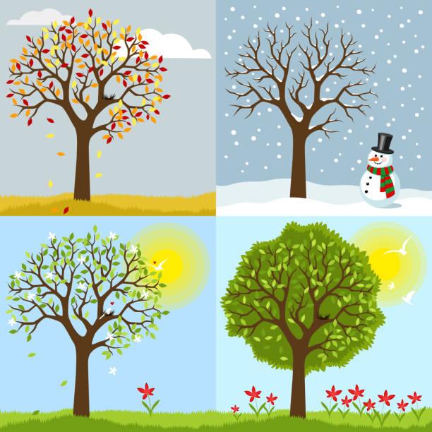 stockillustraties, clipart, cartoons en iconen met de fyra-årstiderna - bloemen storm