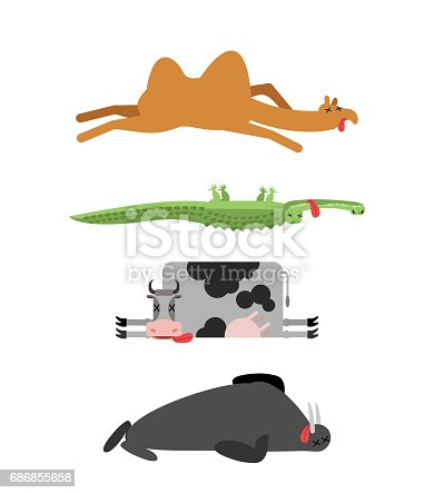 Dead animals set 4. Camel and crocodile. Cow and walrus. animal is death. Corpse of Beast